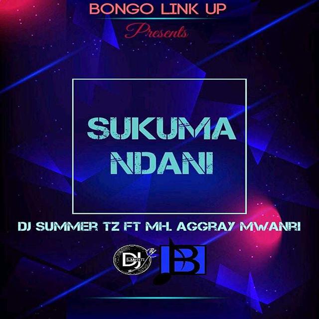 MP3 DOWNLOAD Agray mwanri ft Dj summer - Sukuma ndani