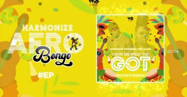 MP3 DOWNLOAD Harmonize ft Yemi Alade - Show me what you got