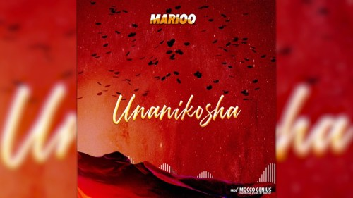 DOWNLOAD MP3 Marioo ft Skales - Unanikosha Remix