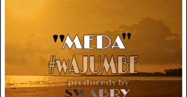 DOWNLOAD MP3 Meda - wajumbe