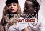 DOWNLOAD MP3 Navy Kenzo - Chelewa Bokodo