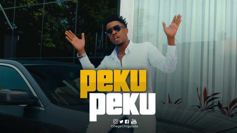 DOWNLOAD VIDEO Chege ft Mrisho Mpoto – Pekupeku
