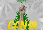 DOWNLOAD MP3 Mr Kesho - Ganja
