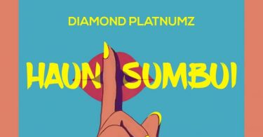 DOWNLOAD MP3 Diamond Platnumz – Haunisumbui