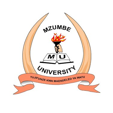 MZUMBE Selected Applicants 2020/21