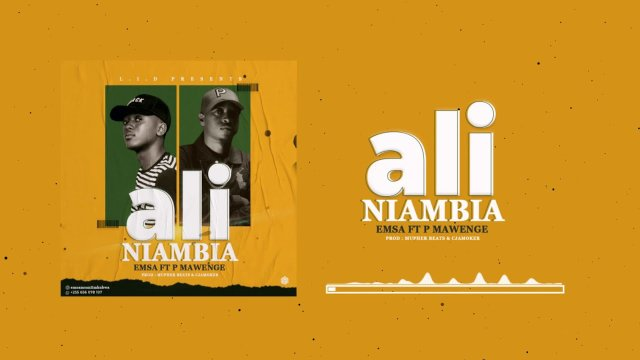 DOWNLOAD MP3 Emsa ft P Mawenge – Aliniambia