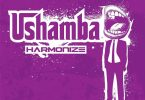 DOWNLOAD MP3 Harmonize – Ushamba