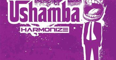DOWNLOAD MP3 Harmonize – Ushamba