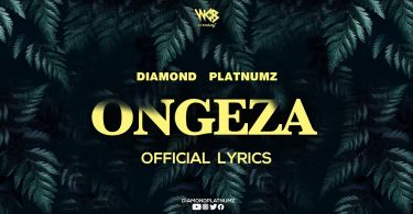 DOWNLOAD VIDEO Diamond Platnumz - Ongeza