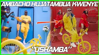 DOWNLOAD VIDEO Harmonize - Ushamba Video Review