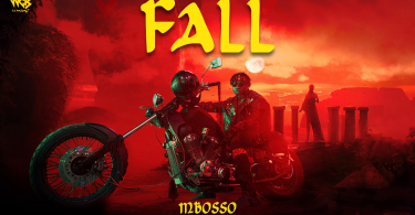 DOWNLOAD MP3 Mbosso – Fall