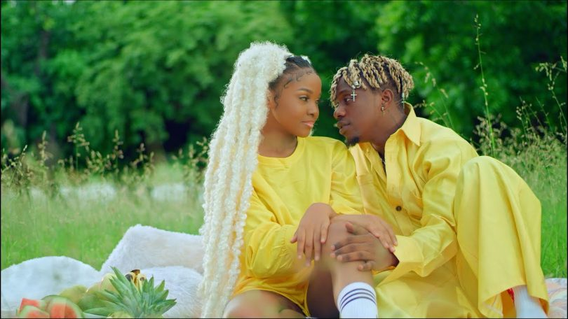 VIDEO DOWNLOAD Rayvanny Ft Zuchu – Number One