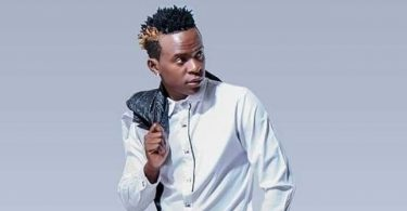 DOWNLOAD MP3 Willy Paul - Collabo