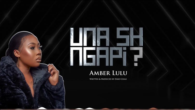 MP3 DOWNLOAD Amber Lulu - Unashingapi