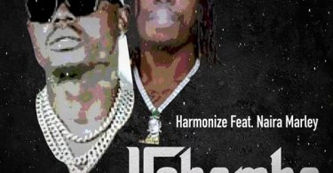 MP3 DOWNLOAD Harmonize Ft Naira Marley - Ushamba Remix