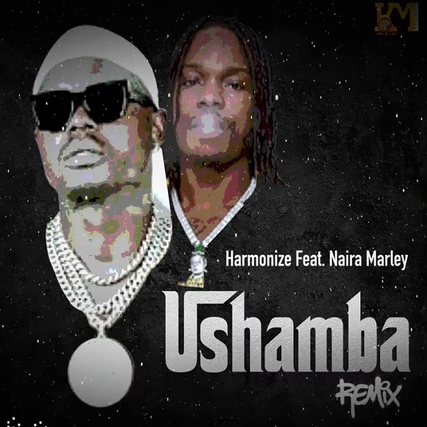 MP3 DOWNLOAD Harmonize Ft Naira Marley - Ushamba Remix