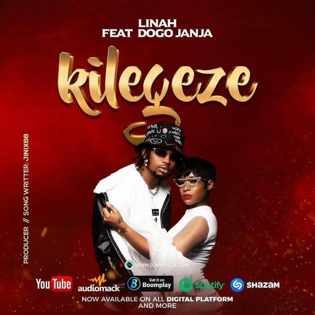MP3 DOWNLOAD Linah ft Dogo Janja – Kilegeze