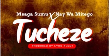 MP3 DOWNLOAD Msaga Sumu X Nay Wa Mitego - Tucheze