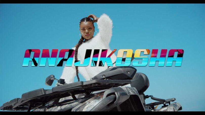 VIDEO DOWNLOAD Harmonize – Anajikosha