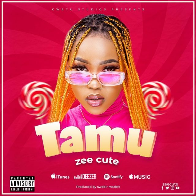 MP3 DOWNLOAD Zee Cute – Tamu