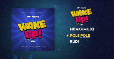 MP3 DOWNLOAD Mr Nana ft Kasim Mganga – Pole Pole