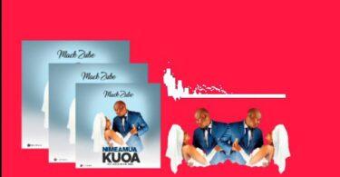 MP3 DOWNLOD Mack Zube – NimeAmua Kuoa
