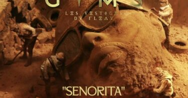 MP3 DOWNLOAD Gims ft Rayvanny – SEÑORITA