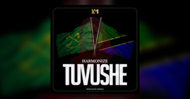 MP3 DOWNLOAD Harmonize - Tuvushe