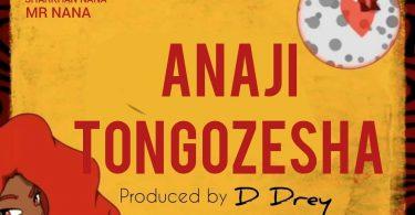 MP3 DOWNLOAD Mr Nana - Anajitongozesha